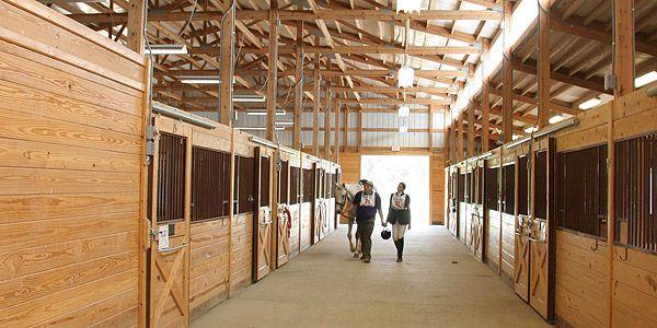 Horseshowoffice Com Event Calendar